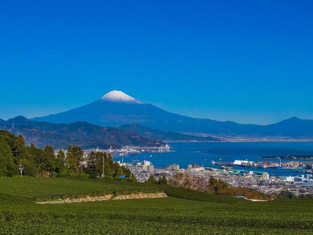 静岡でキッチンカー(移動販売車)を製作するならどこがいい?の写真、その2